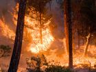 Whitewater-Baldy Complex wildfire, Gila National Forest, New Mexico, June 6th, 2012. Photo by Kari Greer. Credit USFS Gila National Forest.